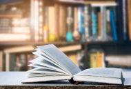 Modelspoor boeken