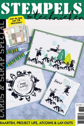 Voorlopige cover Stempelspecial Cards & Scrap