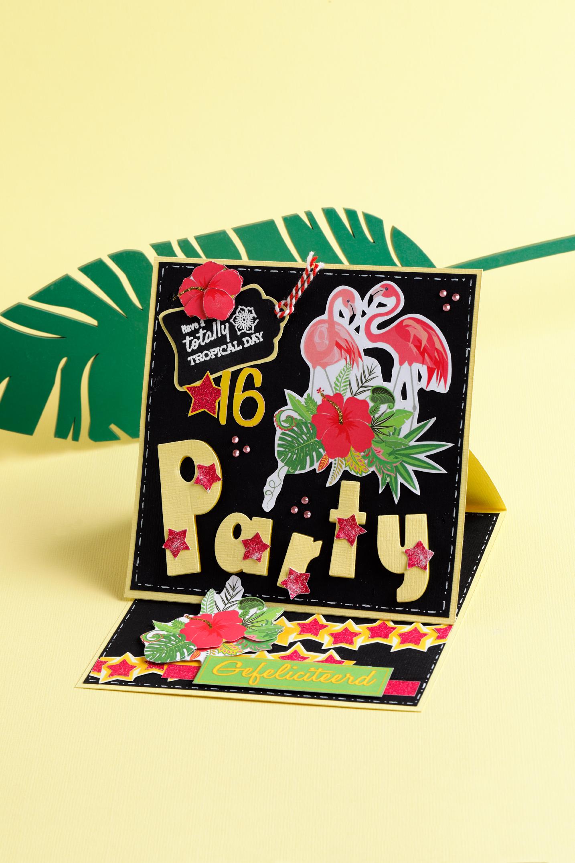Tropisch feestje, Mijn Hobbykaart, kaarten